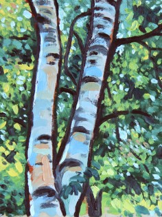 birch_trees_thumb
