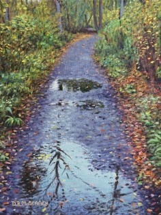 Rainy_Path_at_Rattray_Marsh_small